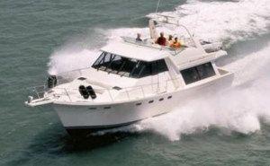 bayliner-boats-for-sale
